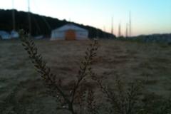 5_Yurt-langt-fra